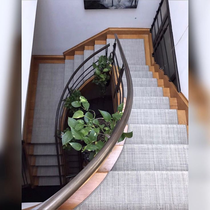 Best 13 Best Carpet Nourison Images On Pinterest Carpet Rug 400 x 300