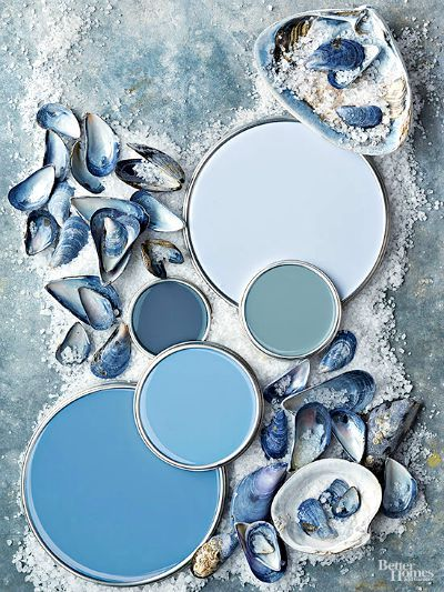 Blue Seashell Color Scheme: http://www.completely-coastal.com/2011/01/room-color-schemes-from-shore.html
