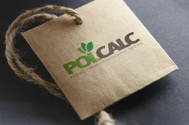 Polcalc Logo Design
