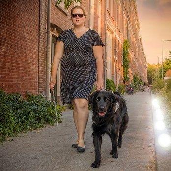 Lees het verhaal van Willemijn over hoe haar lichtpuntje blindengeleidehond Lobbes haar leven verlicht.