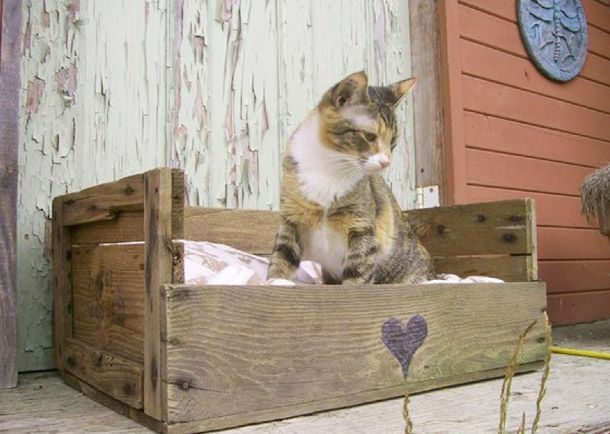 Upcycled cat bed, made from palettes. #upcycled #pets #cat #palettes