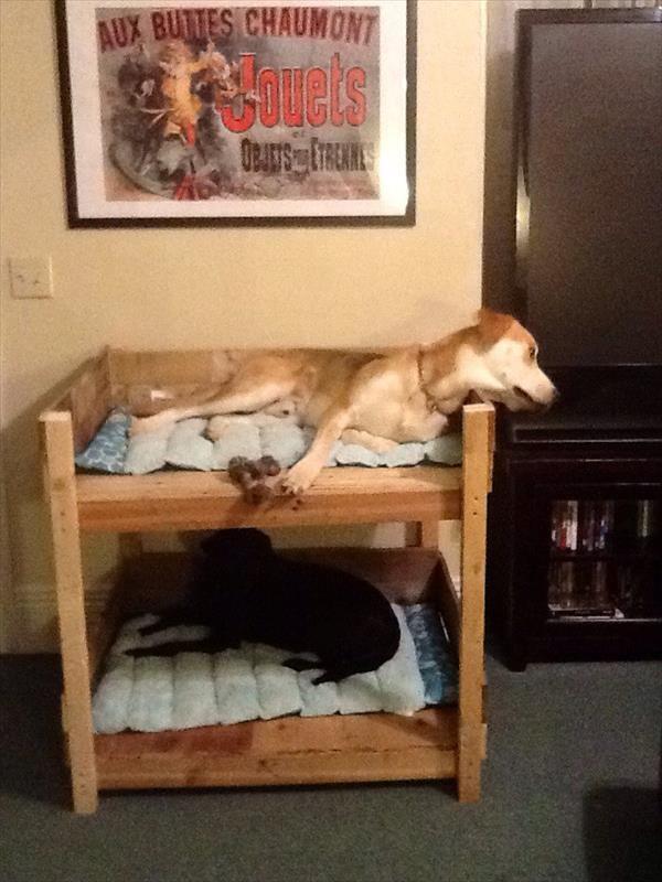 DIY Pet Bunk Bed - Plans to Build Dog Bed   Pallet Furniture Plans