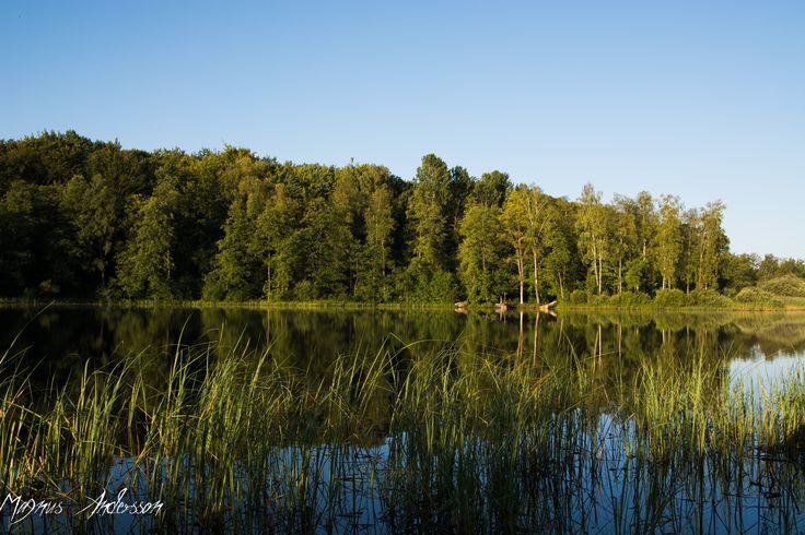 Åsljungasjön