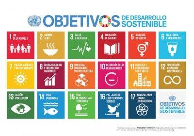 """""""La cumbre de la ONU marca el cierre de un capítulo – la adopción de los ODS y el fin de sus predecesores, los Objetivos de Desarrollo del Milenio (ODM) – pero marca también el comienzo de uno mucho más importante. La descripción oficial, un tanto grandilocuente, es la de """"Agenda de Desarrollo Post 2015"""", que esencialmente significa poner el texto de los ODS en acción."""", afirma Marike de Peña, Presidenta de Fairtrade International."""