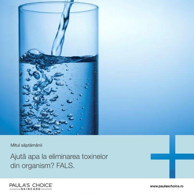 Nu există toxine pe care corpul să nu le poată elimina prin procesele sale naturale și biologice. Nu este rău să bei multă apă, dar acest lucru nu va schimba cât sebuum vor produce porii și nici nu va rări apariția pustulelor. Este un mit faptul că toxine neindentificate cauzează acnee - așa cum am menționat de multe ori, hormonii sunt principalii vinovați, iar apa nu are nici un rol în acest proces.