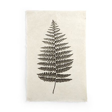 Botanical Fern Print