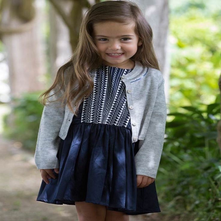 Fox & Finch Baby Brittany Embroidered Party Dress in Navy