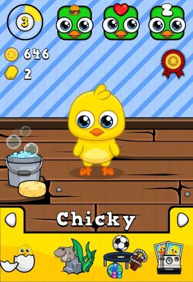 Mijn eerste kip