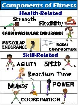 PE Poster: Components of Fitness- Health and... by Cap'n Pete's PE | Teachers Pay Teachers