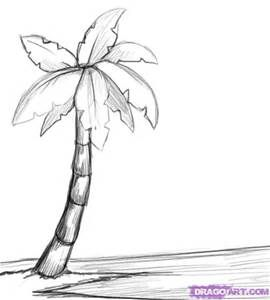 How to Draw a Palm Tree, Step by Step, Trees, Pop Culture, FREE Online ...