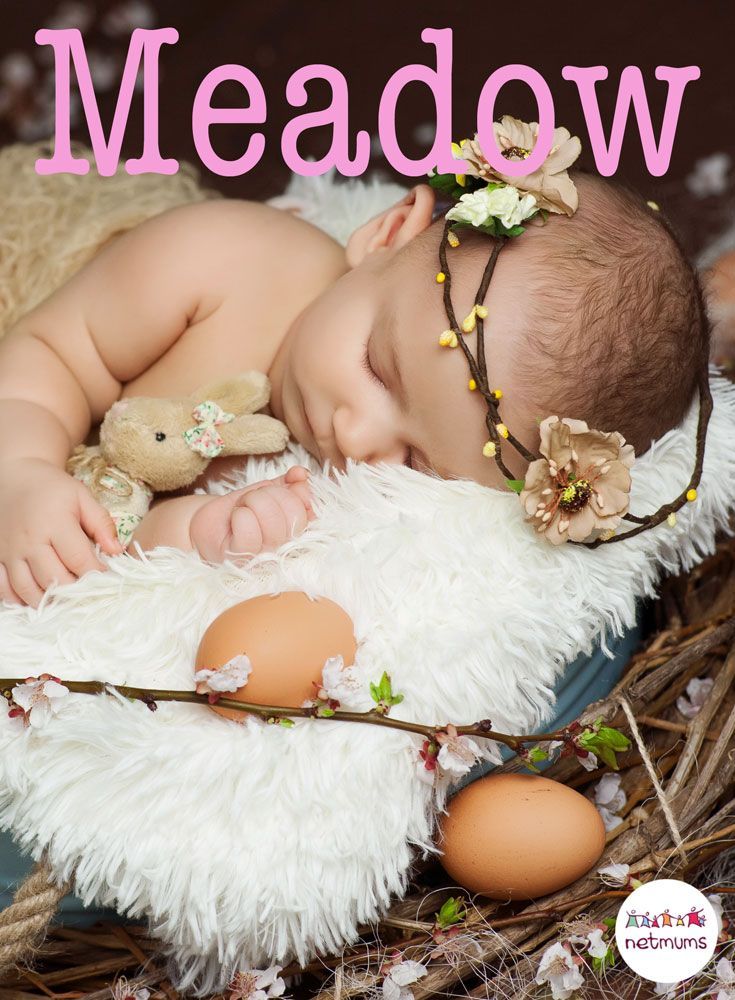 animals and their babies names pdf free