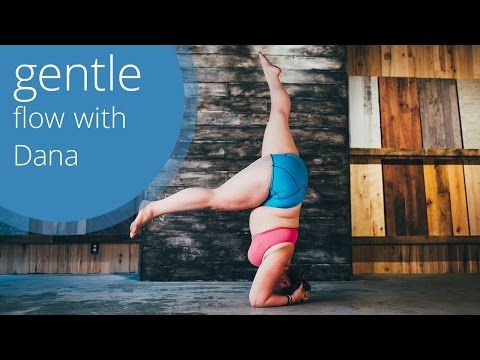 Gentle Beginner Yoga Flow with Dana Falsetti - YouTube