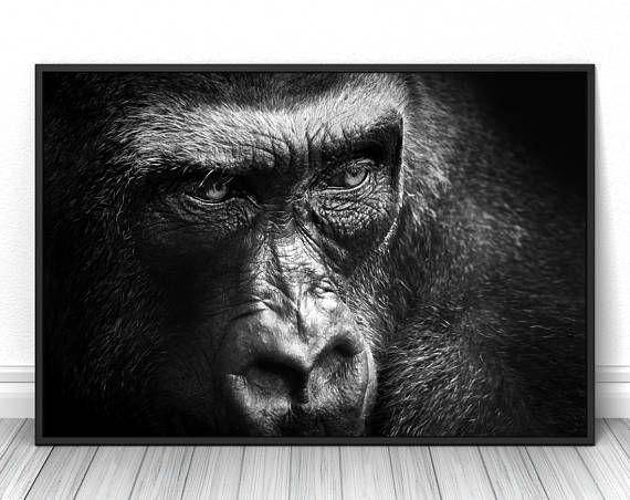 Creative Gorilla Print, Black and white animal fine art photography, Living room wall decor, Studio sketch poster, Wild nature photo #gorilla #monkey #blackandwhite #print #poster #fineart #art #creative #unique #fineartphotography #fineartprint #wallart #livingroomdecor #walldecor #bedroomdecor