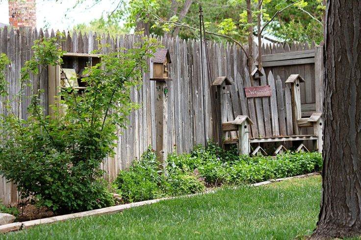 ideas for privacy fencing landscaping | Fence design ...