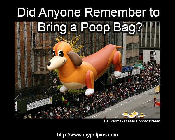 Did Anyone Remember to Bring a Poop Bag?