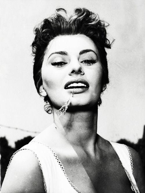 Sophia Loren, my birthday buddy ;)