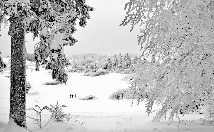 """Le Champs du Feu sous la neige - the """"fire field"""" under the snow"""