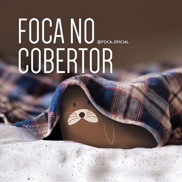 Partiu cobertor! #focanocobertor #foca #foco #friozinhobom #boanoite