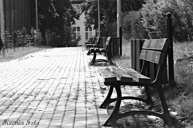 Photographic Walk around the city of Swiecie, Poland