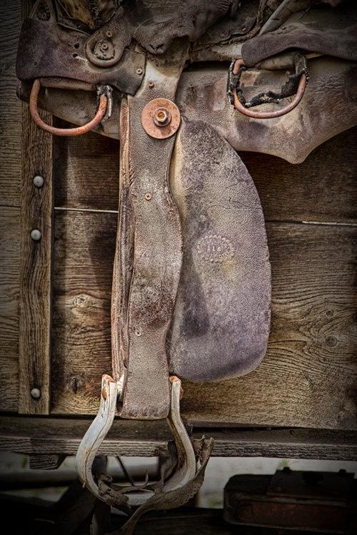 Horse Saddle Shop Coupon Code,Horse Saddle Shop Promo Code - https://www.facebook.com/HorseSaddleShopCouponCodes