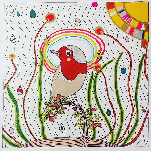 No matter what you do, keep your rainbow close to you!// Ne yaparsanız yapın, gökkuşağınızı yanınızdan ayırmayın!🌈#rainbow #sun #rain #robin #bird #illustration #illustrasyon #illustracion #drawing #sketch #kızılgerdan #kuş #gokkusagi