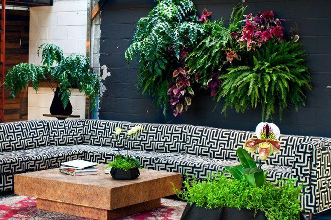 10 besten tischdeko mit tillandsien bilder auf pinterest for Balkonpflanzen kunstlich