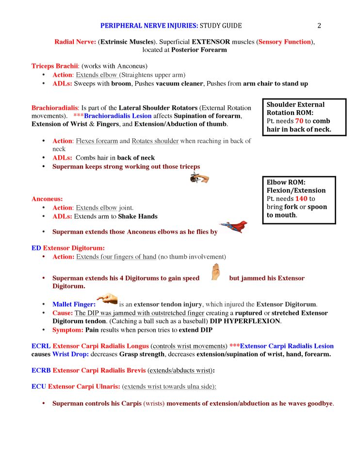 Peripheral Nerve Injuries Study Guide page 2