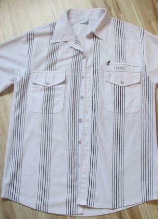 À vendre sur #vintedfrance ! http://www.vinted.fr/mode-hommes/chemises/33101794-chemisette-homme-taille-m