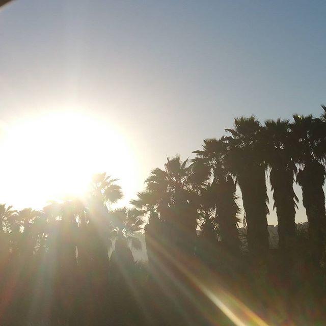 Cool sunset tonight! -------------------------- #run #trailrun #missiontrails #sandiego #california #santee #nature #beauty #blueskies #fit #hike #trail #mudrun #ironmountain #mountainbike #cowlesmountain #mtb #lagunamountain #lakemurray #lakehodges  #santacruz #sancarlos #beach #lajolla #stayfit #worlderunners @best.of.sandiego #sunsetporn #nationalparkgeek @blitzworld #lajollalocals #sandiegoconnection #sdlocals - posted by Tammy Scott  https://www.instagram.com/outdoorsytammy. See more…