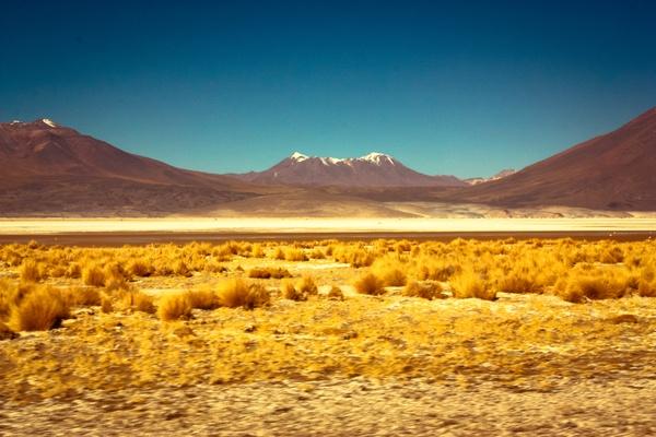 Hermoso!!! No one's land by Carlos Gutierrez, via Behance