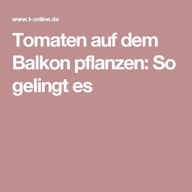 Die 25+ Besten Ideen Zu Tomaten Pflanzen Balkon Auf Pinterest ... Pflanzen Fur Den Balkon Hilfreiche Gartentipps