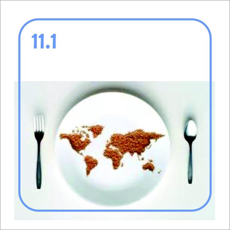 11.1 Consumo del suolo - E quando lo avremo terminato come ci sfameremo?