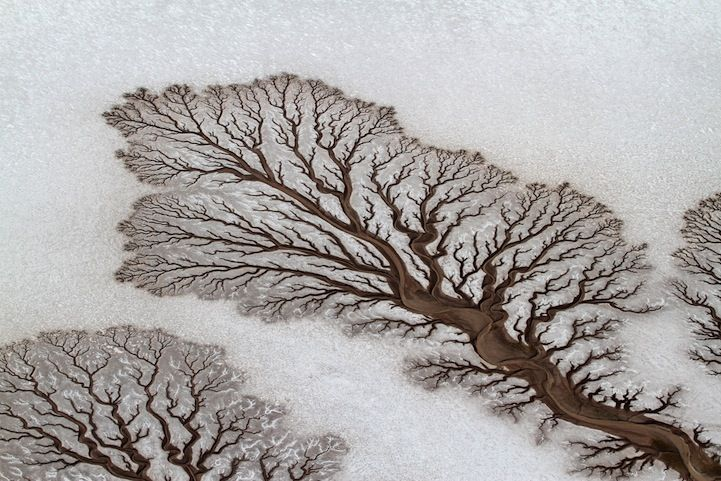 10 Incredible Nature Shots in 2014 National Geographic Traveler Photo Contest - My Modern Met