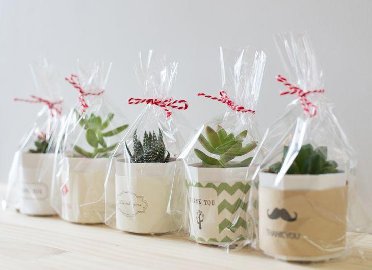 結婚式のプチギフトにサボテンや多肉植物を使ったアイディア!ラッピングすれば、可愛さ倍増です!海外のウェディングではよく植物が使われていますよね!