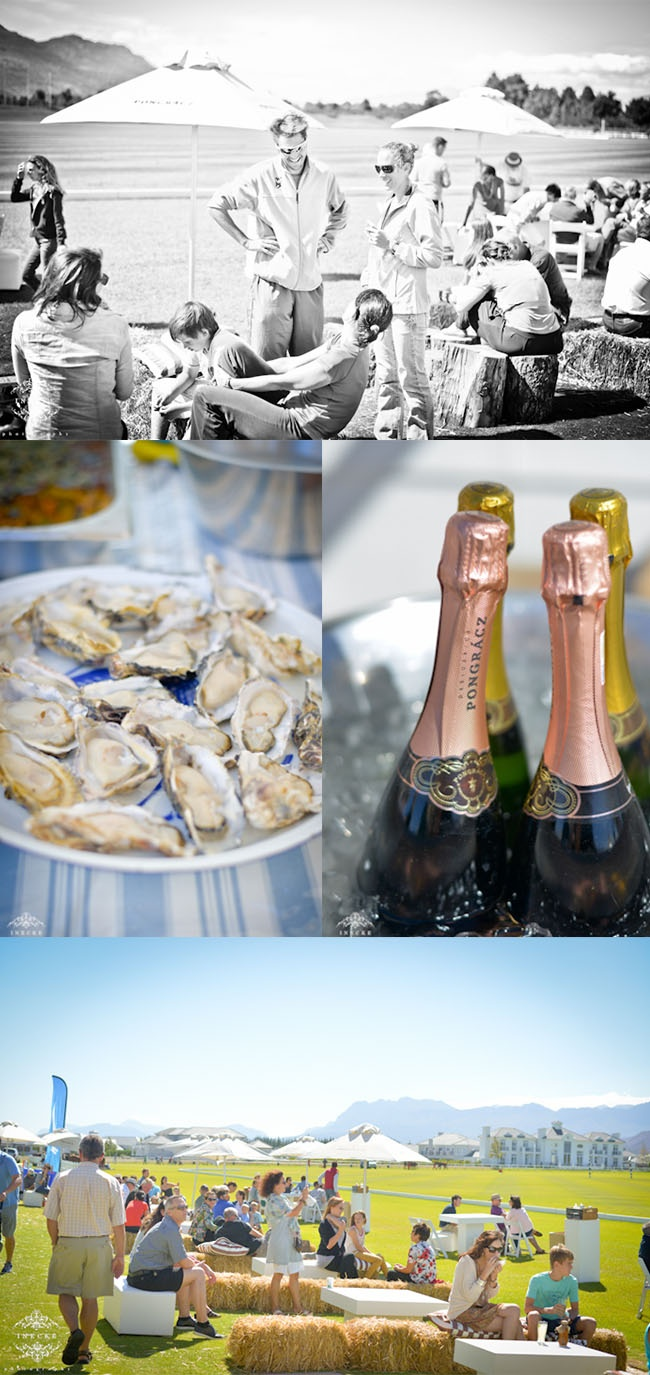 Luxury living at The Market at Val de Vie Estate with oysters and sparkling wine.