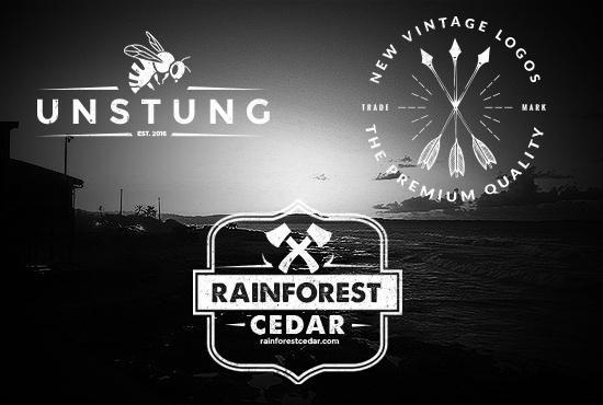 make 2 BEAUTIFUL Vintage retro Logo design for you 24h
