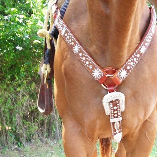 Blingy Spur Horse Tack