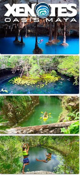 Four different kinds of cenotes