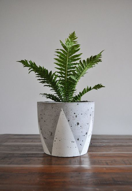 Concrete Planter - Large by fox & ramona  you need green in your room $60