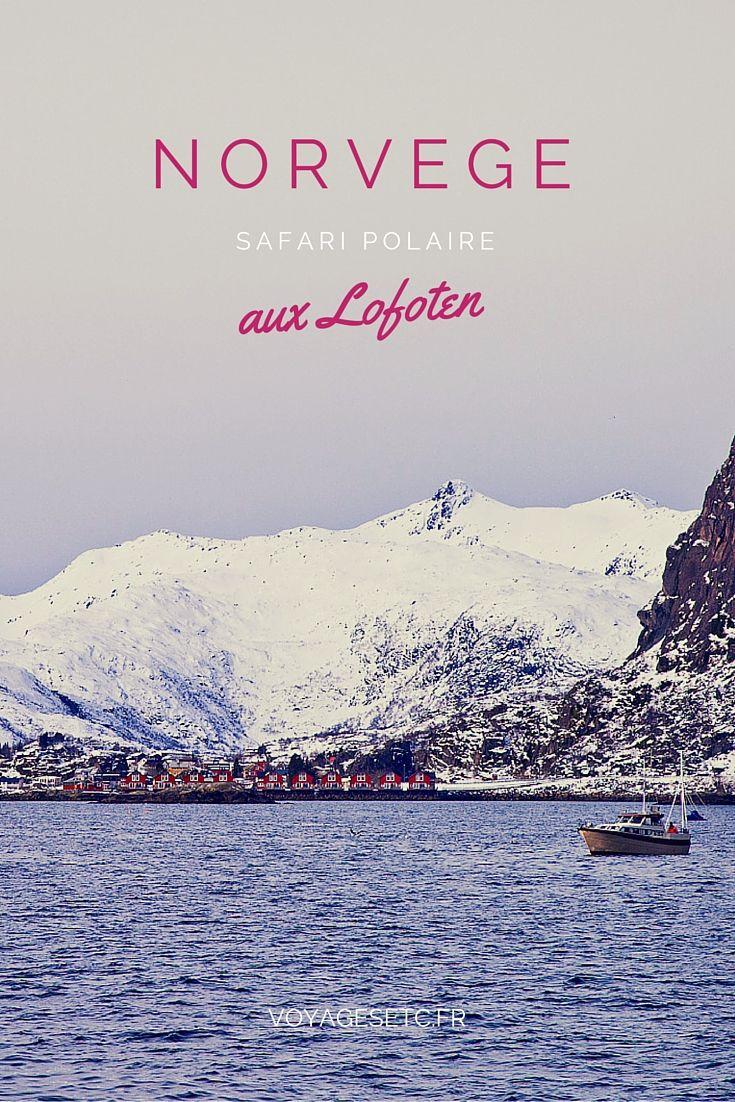 Dormir dans une maison de pêcheur et sortir une 1/2 journée sur un bateau de pêcheur pour un safari polaire aux Lofoten, c'est ce je vous propose de faire ! #voyage #norvege #lofoten