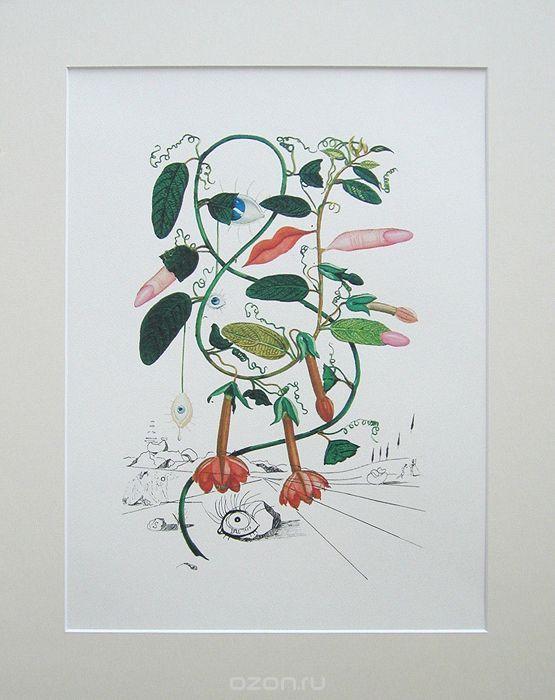 Сальвадор Дали. Цветущий горошек. Цветная литография. Серия FlorDali, 1979 | 13 500 р.