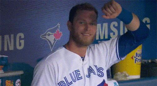 For the second year in a row, the Blue Jays are in the postseason. Here's a look back at the highlights of 2016.