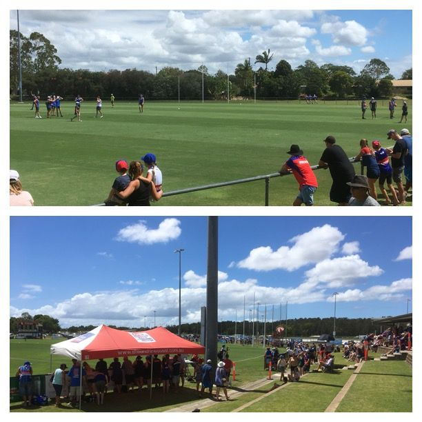 Open training for last years premiers the Western Bulldogs 29th January 2017 Maroochydore QLD