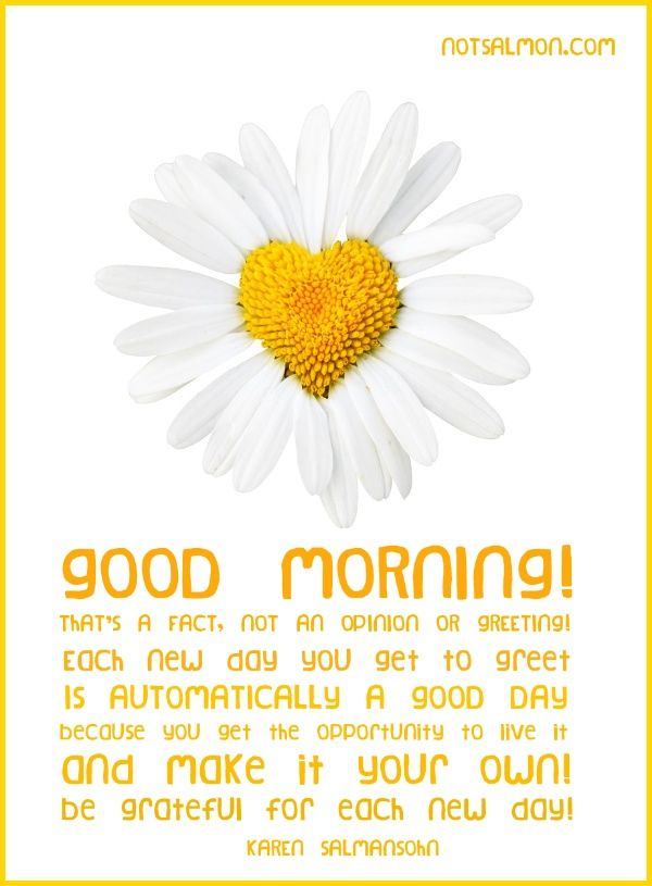 Good Morning Quotes : Good Morning  #GoodMorningQuotes https://quotesayings.net/wishes/good-morning-quotes/good-morning-quotes-good-morning-75/