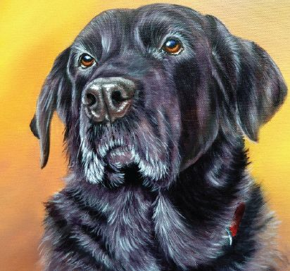 Art Tutor - Black Labrador in Acrylics - Marion Dutton's step-by-step guide Faithful Friend