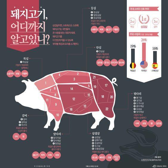 """""""이건 제 전문입니다만"""" 대한민국이 사랑하는 돼지고기 [인포그래픽]   비주얼다이브"""
