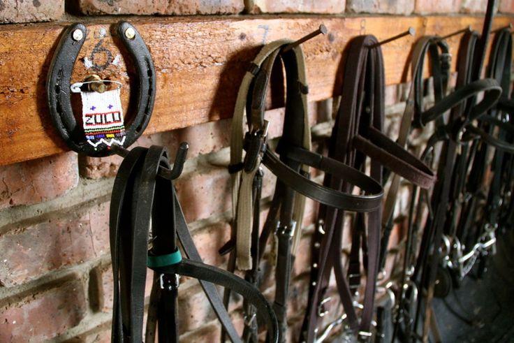 Saddle room @mooikransequus #horsefarm #holidays