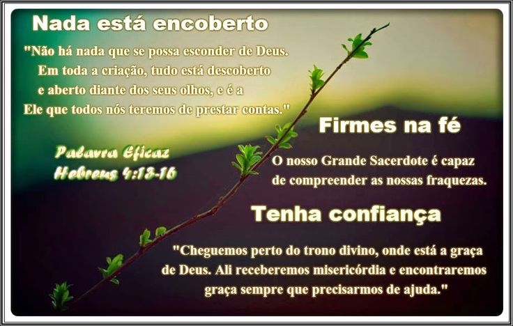 Promessas para hoje: Cristo, o Grande Sacerdote-Hebreus 4:13-16