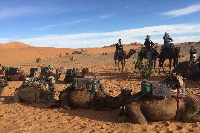 Authentic From Fes To Marrakech Via Desert Tour 4 Days 3 Nights Safe Driving Affiliate Ad Marrakech Desert Authentic Desert Tour Marrakech Tours