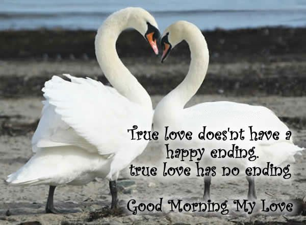 Best 25 Romantic Good Morning Quotes Ideas On Pinterest: Best 25+ Good Morning My Love Ideas On Pinterest